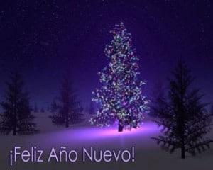 Ano nuevo 2012
