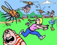 Curiosidades Mensaje-a-la-conciencia-nube-de-mosquitos